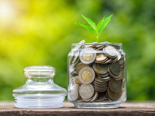 Как привлечь вдом деньги: советы Ванги накаждый день