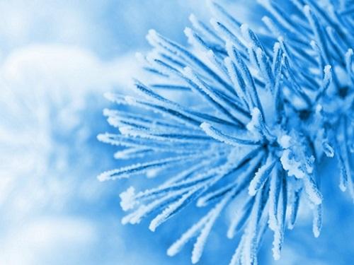 Зимние приметы наудачу иденьги