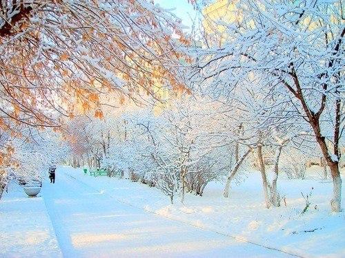 Зимние ритуалы наденьги, успех илюбовь