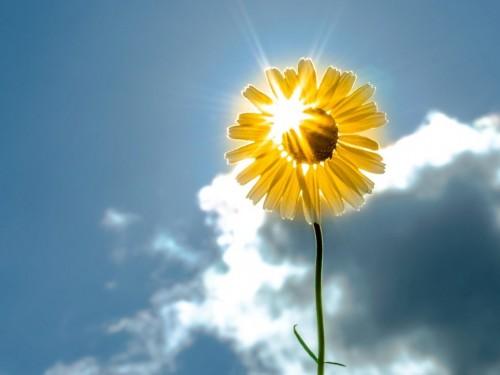 10вещей, откоторых нужно избавиться довесны: обновляем свою энергетику