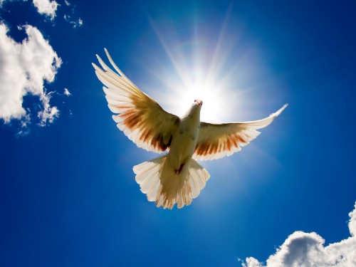 Молитвы осчастье иблагополучии наСретение Господне
