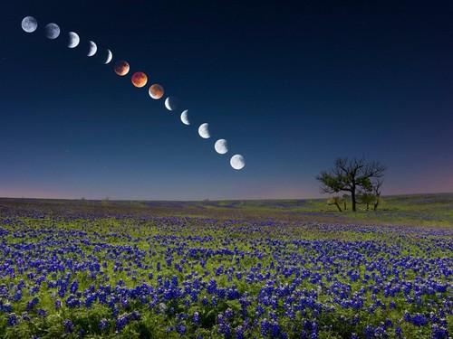 Убывающая Луна вапреле 2019 года