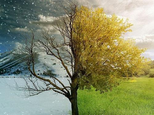 Народные приметы, предсказывающие погоду