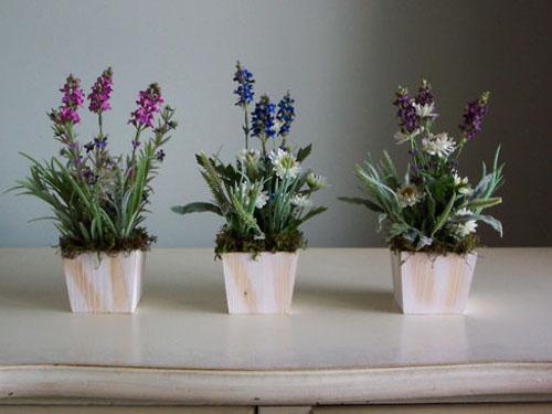 Какие цветы нельзя держать дома: фото иприметы