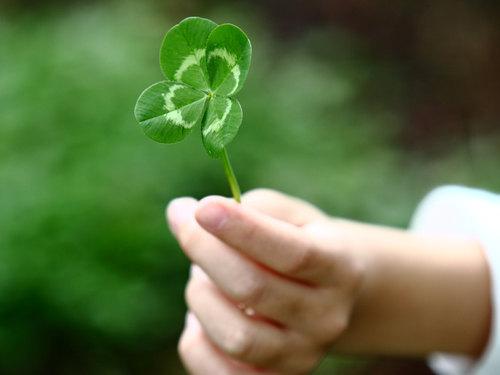 Что делать, если отвернулась удача: 3способа вернуть везение