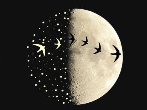 Заговоры нарастущую Луну