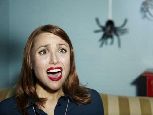 Увидеть паука: очем предупреждает примета