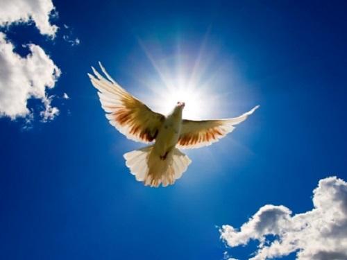 Духов день 17июня: молитвы, заговоры иобряды