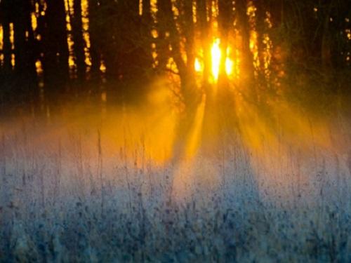 Самый длинный день в2019году: летнее солнцестояние 21июня