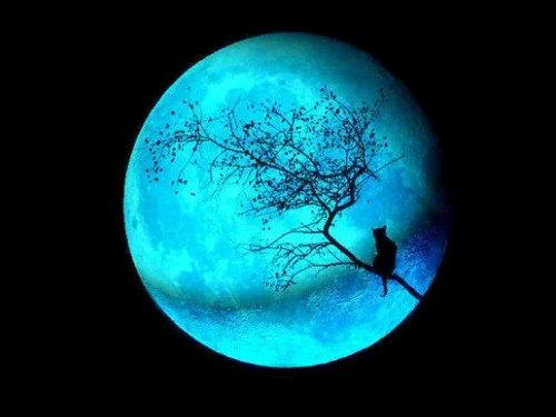 Лунный календарь поЗнакам Зодиака наиюль 2019 года