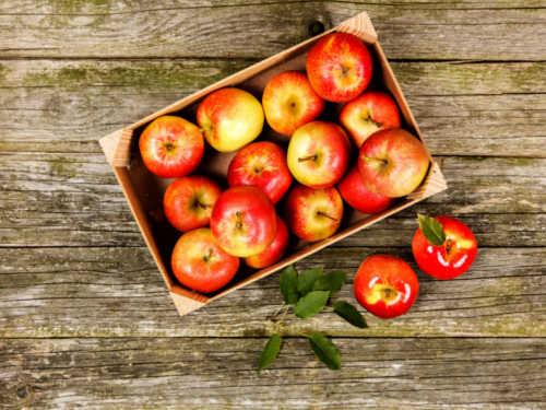 Почему доЯблочного Спаса нельзя есть яблоки