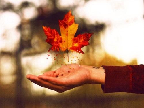 Полезные обряды наначало осени: привлекаем удачу иденьги 1сентября