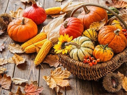 Осенины 21сентября 2019года: заговоры иобряды набогатство, удачу исемейное счастье