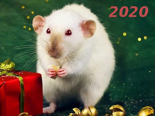Гороскоп на2020 год погоду рождения