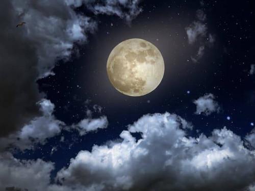 Лунный календарь поЗнакам Зодиака наноябрь 2019 года