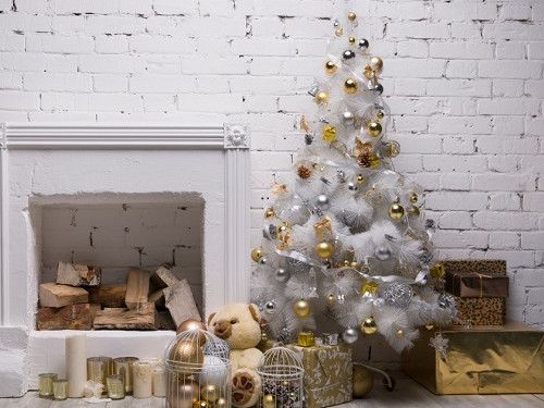Новый год пофэн-шуй: куда поставить елку?