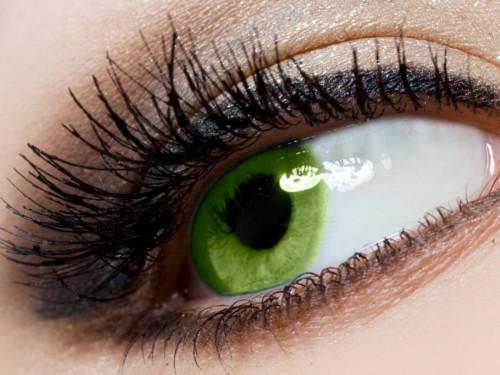 Зеленые глаза: энергетика, характер ицвета, приносящие удачу