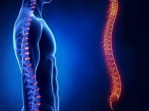 Осанка ибиоэнергетика: почему важно держать спину прямо
