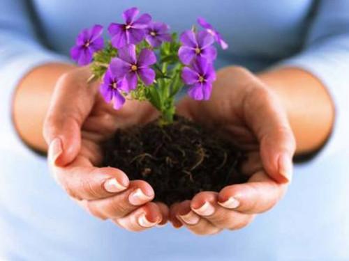«Немаяться вмае»: три весенних ритуала налюбовь, счастье ибогатство