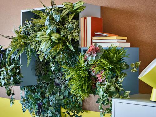 Какие комнатные цветы привлекут вдом счастье иукрепят вашу энергетику, акакие только навредят