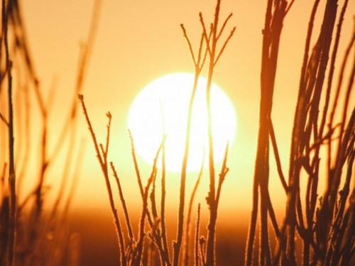 Какого числа летнее солнцестояние в2020 году