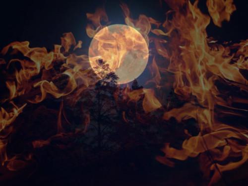 Луна вогненных Знаках Зодиака: что можно делать ичто нельзя