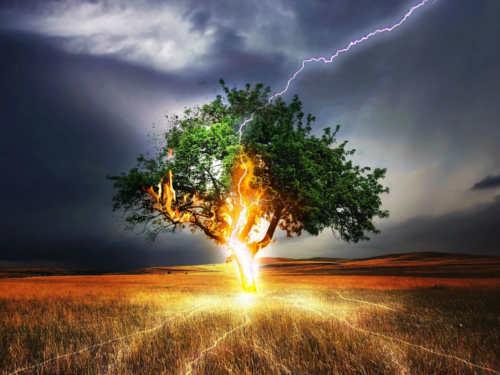 Зов природы: как наполниться силами залето, чтобы хватило навесь год