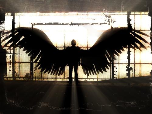 5советов, которые помогут установить прочную связь свашим ангелом-хранителем