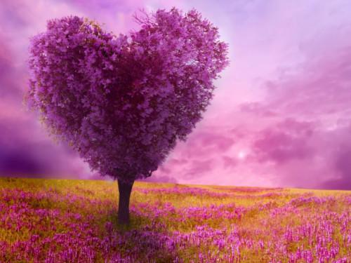 Любовный темперамент ивремя года: как любят люди, рожденные весной