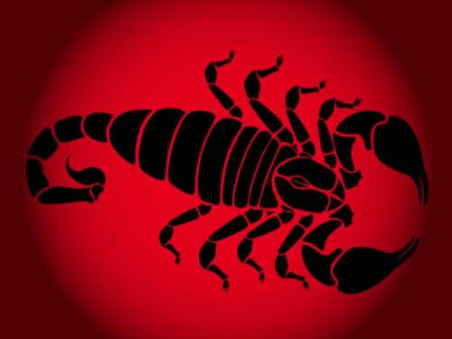 Характеристика Скорпионов поВосточному гороскопу