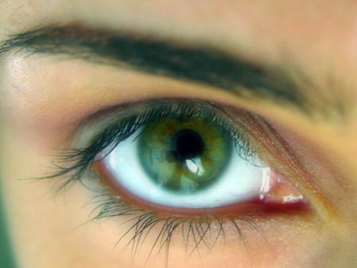 10интересных фактов про энергетику людей сзелеными глазами