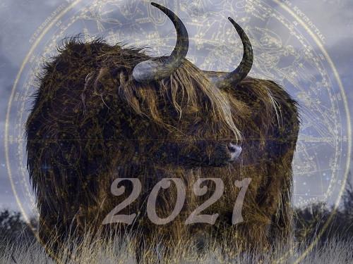 Каким будет 2021 год повосточному календарю