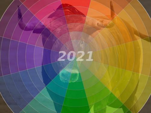 Вкаком цвете встречать 2021 год