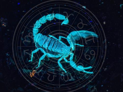 Зодиакальный Скорпион вступает всилу 24октября 2020 года