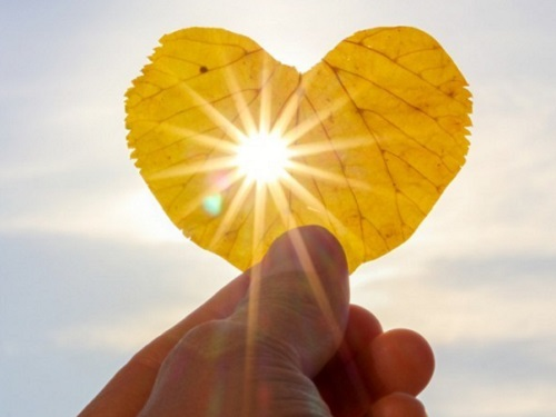 Любовный гороскоп нанеделю с 23 по 29 ноября 2020 года