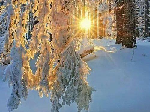 Зимний солнцеворот: как встарину отмечали Йоль иКоляду