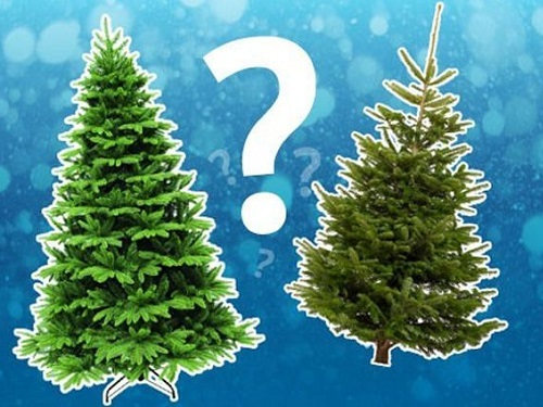 Энергетика искусственной елки: стоитли наряжать еенаНовый год