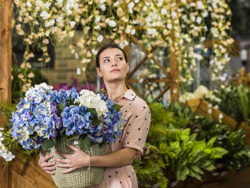 Комнатные цветы, которые помогают женщинам привлечь любовь инайти счастье