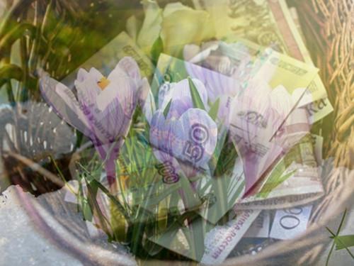 Открытие денежного канала: две мощные весенние практики богатства