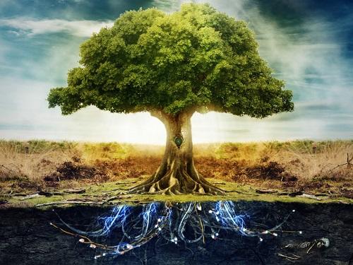 Как укрепить энергию рода исемьи