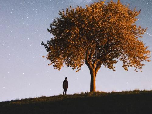 9 мудрых истин озависти, обидах исаморазрушении