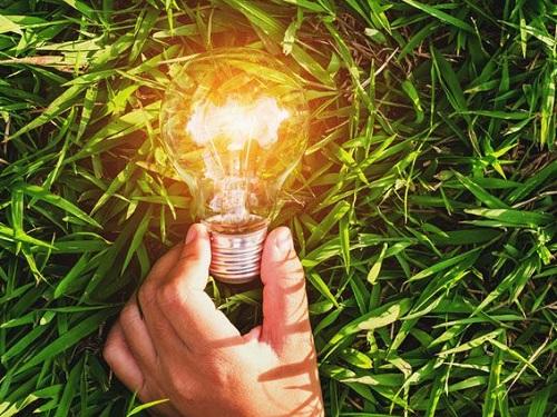 Лучшие травы для повышения энергетики весной