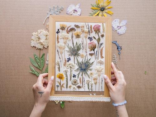 Осенний гербарий: ваш амулет наудачу, богатство ипроцветание