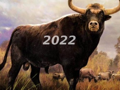 Славянский гороскоп на2022 год поЗнакам